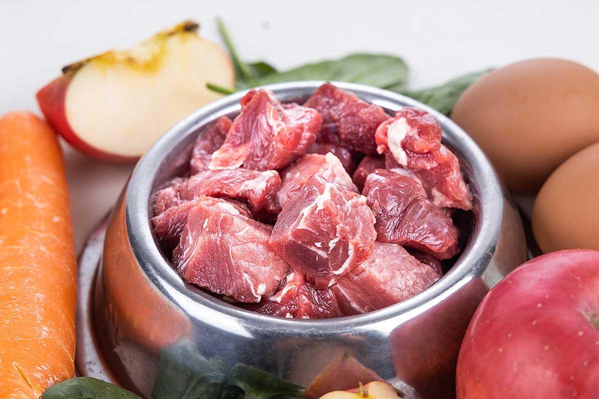 bio-hundefutter-gute-zutaten